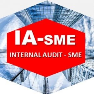Internal Audit - SME