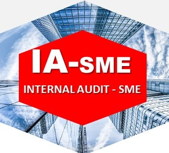 Internal Audit - SME